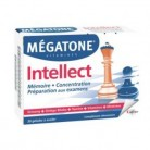 Megatone Intellect