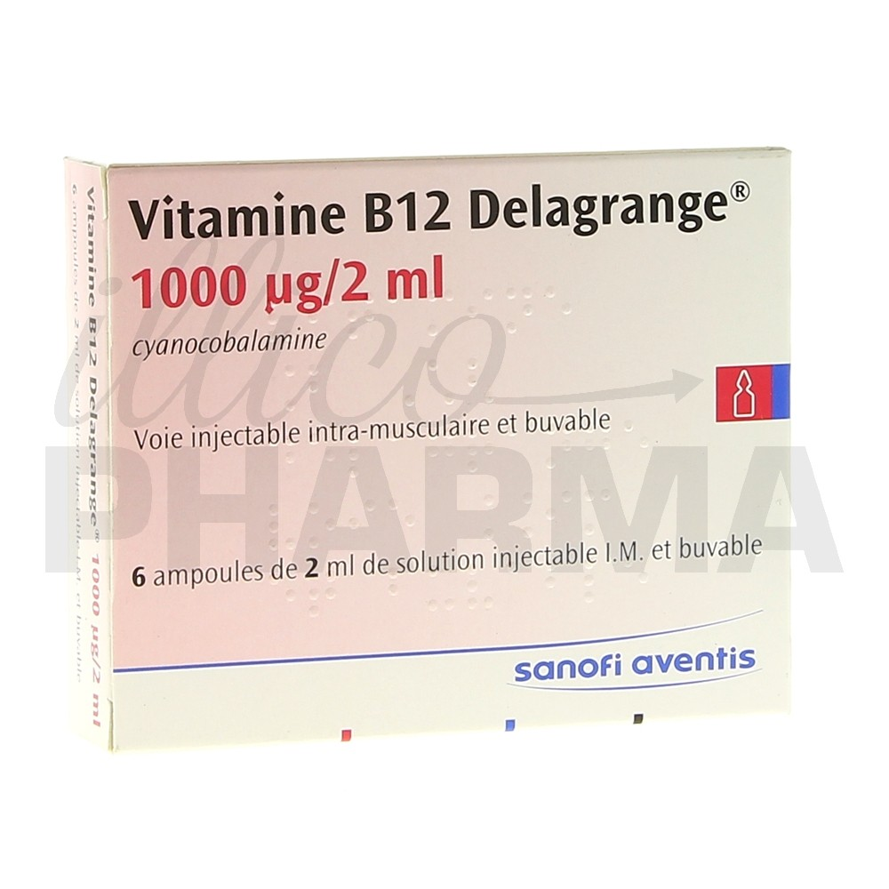 vitamine b12 delagrange 1000 g 2ml 6amp 2ml vitamine e pharmacie illicopharma. Black Bedroom Furniture Sets. Home Design Ideas