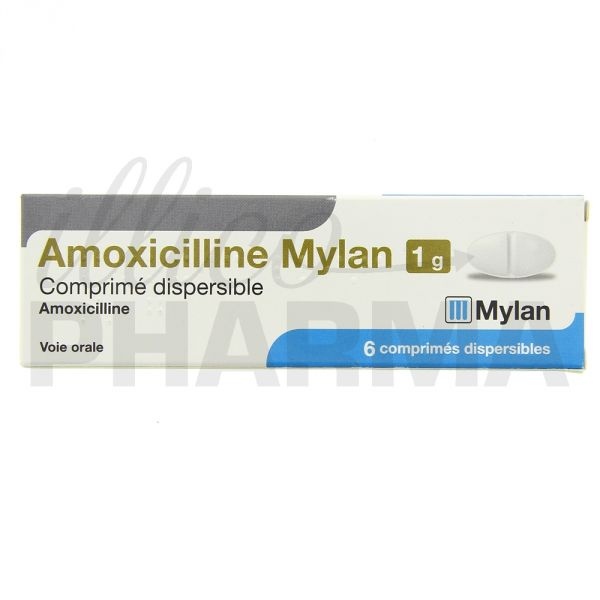 Amoxicilline antibiotique notice / Medicament prednisolone