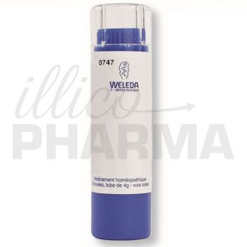 T.r.e.  D8 (tissu reticulo- endothelial) granules Weleda