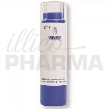 Argentum arsenicosum D15 granules Weleda