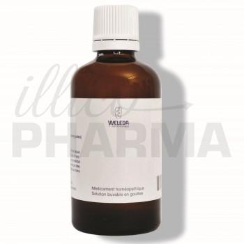 Hepar magnesium D8 gouttes Weleda