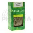 Tisane Plantain Vitaflor 100g