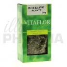 Tisane Ortie blanche Vitaflor 70g