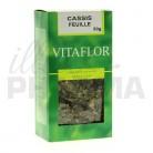 Tisane Cassis Vitaflor 50g