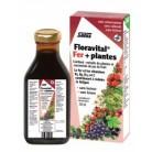 Floradix Floravital sans gluten...