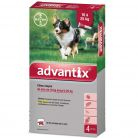 Advantix chien 10-25kg x4 Bayer