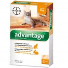 Advantage chat lapin - de 4kg x4...
