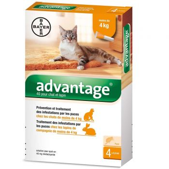 Advantage chat lapin - de 4kg x4 Bayer