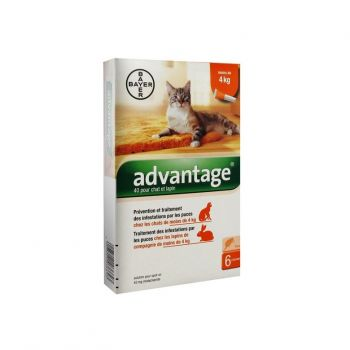 Advantage chat lapin - de 4kg x6 Bayer