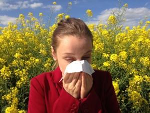 Allergies printanières_03