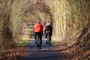 cyclists-4002948_640