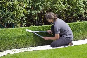 Prendre soin de son corps avant, pendant et après le jardinage.