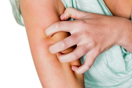 La maladie de Lyme est transmise par les tiques